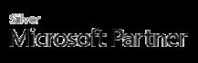 auric microsoft silver partner